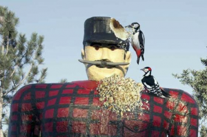 Bunyan_woodpecker
