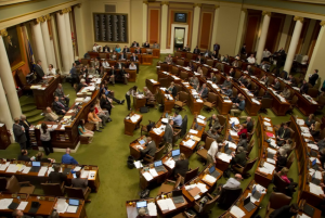 Minnesota_Legislature_-_Google_Search