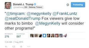 Megyn_Kelly_bimbo