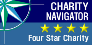 cursor_and_four_star_rated_-_google_search